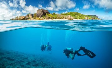 Immersioni alle Seychelles